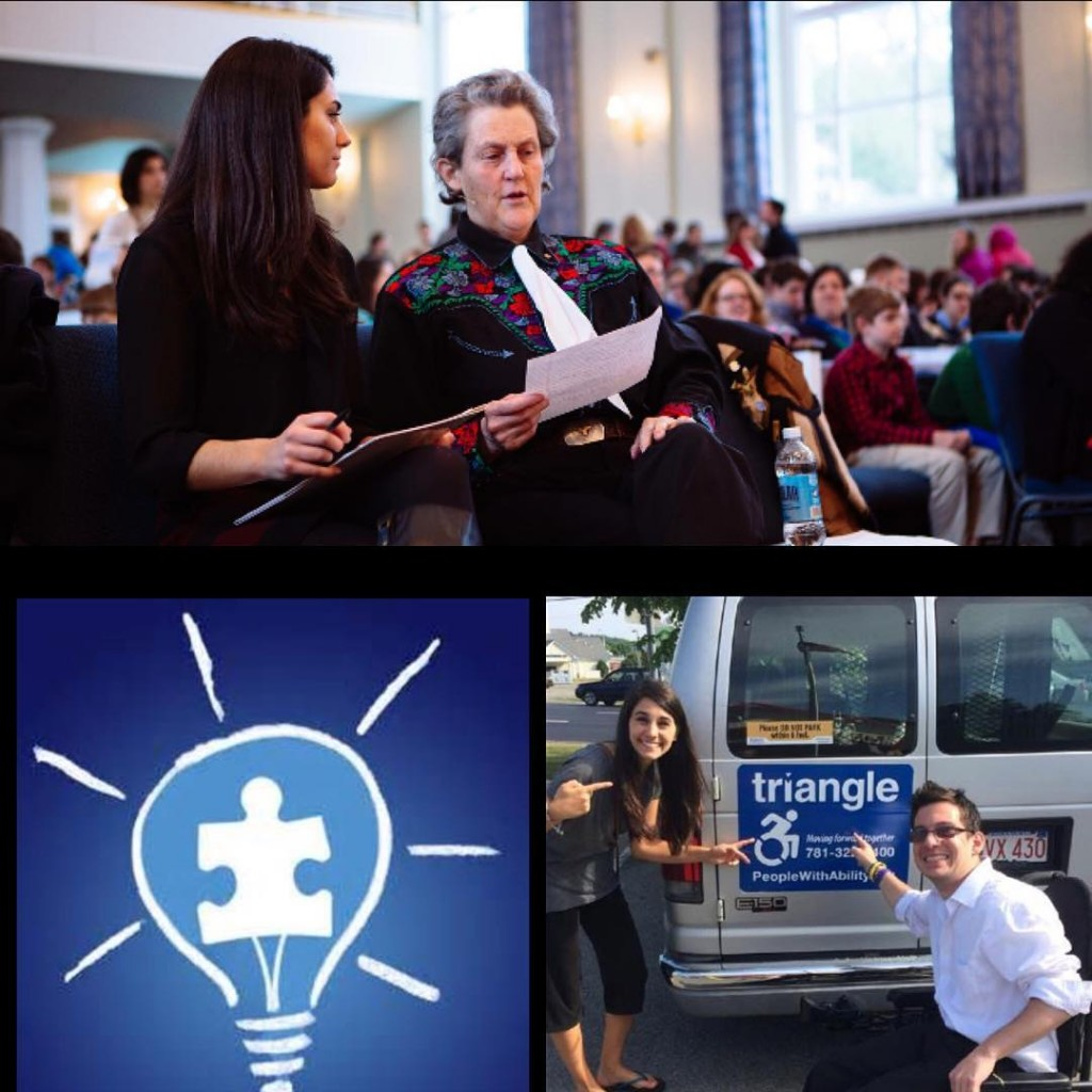 LIUB, accessible icon project, awareness